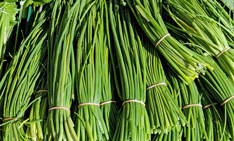 chives-1287096_960_720